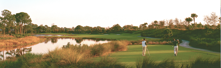Collier's Reserve Golf