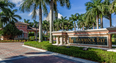 hammock bay community information