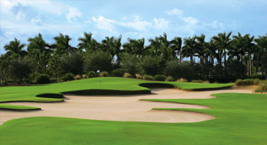 tiburon naples gold golf course