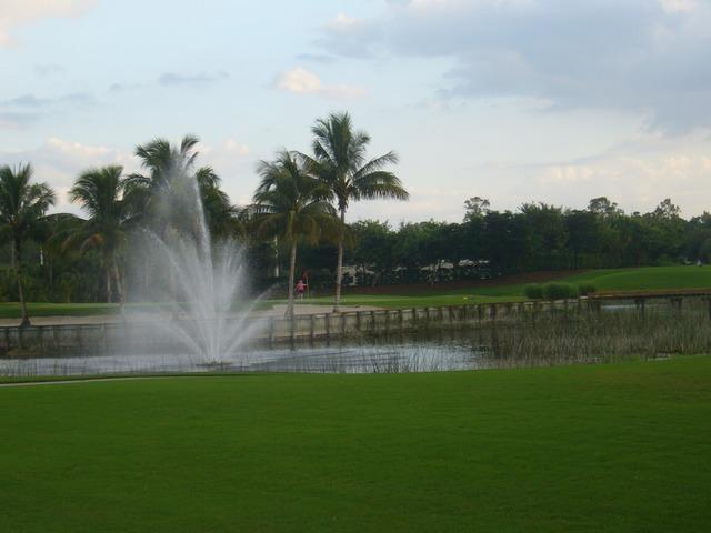 Cedar Hammock Naples Luxury Golf Real Estate