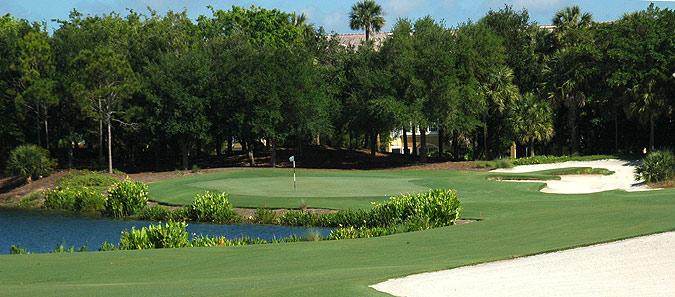 Tiburon-golf-course