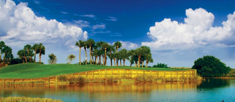 Fiddler's Creek Golf And Country Club