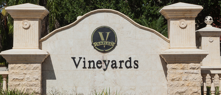 Vineyards Homes For Sale