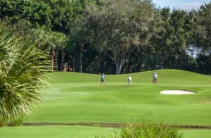 Pelican Marsh Golf
