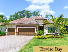Treviso Bay Homes - 9389 Vercelli Ct Naples Florida 34113